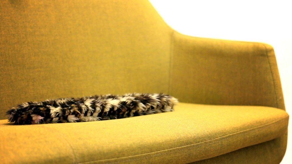 猫じゃないのに猫っぽい! 平たくてモフいロボット「flatcat」