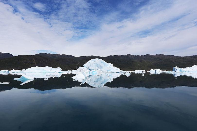 氷にくっついてた植物は語る。100万年前のグリーンランドには氷がなかったってさ