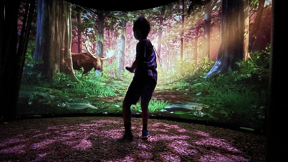 「もしも図鑑の中に入りこめたら?」を体験できる、新感覚のデジタルミュージアムがオープンするよ!